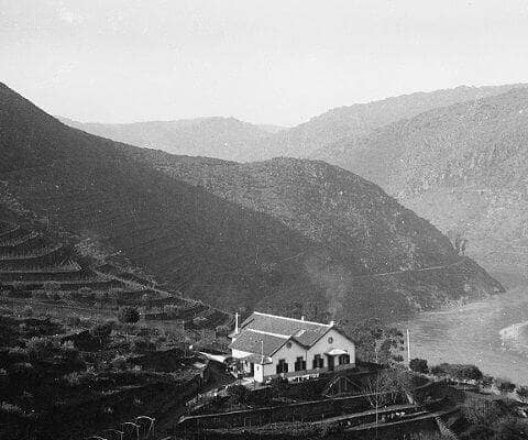 Until the last decade of the 18th century the steep rocky hillsides around Vargellas were remote and inaccessible. The Valeira gorge, a mile or two...
