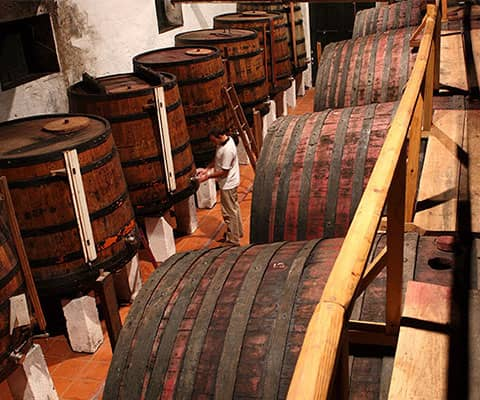 The winery at Vargellas combines both traditional and technically advanced features. As on the other TaylorFladgate estates, the Ports...