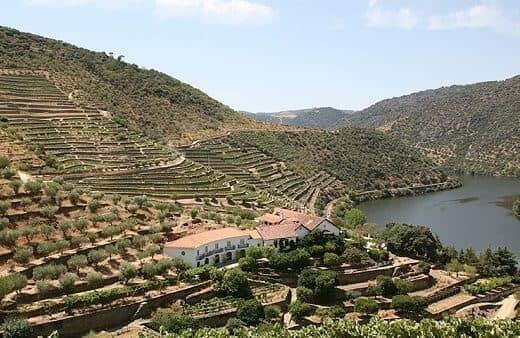 Quinta de Vargellas is pre-eminent among the wine estates of the Douro