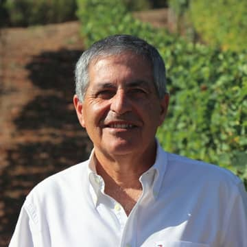 Born into a family with a long history of producing Port, this was a natural career path for António. In 1983 he graduated from the University of Trás-os-Montes with a degree in...