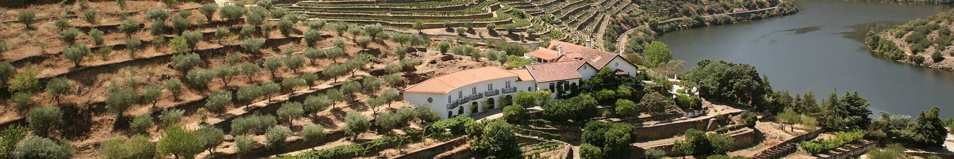 Quinta de Vargellas is pre-eminent among the wine estates of the Douro. Located in the wild and hilly eastern reaches of the valley, it has been...