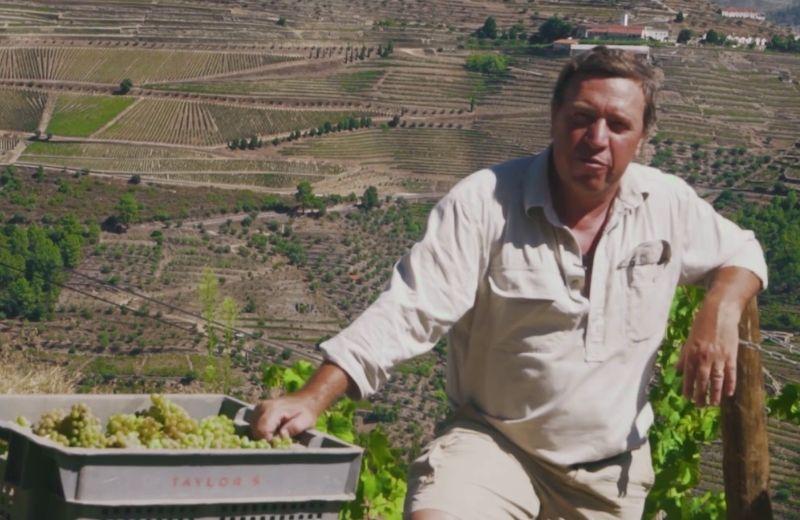 Malvasia Fina, Viosinho, Arinto and Gouveio are grape varieties used to make dry white Port.David Guimaraens, Taylor Fladgate's Head...
