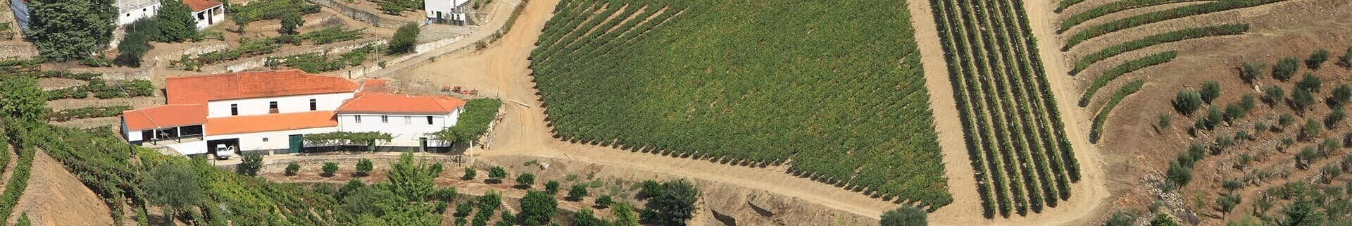 Ironically, the histories of many of the Pinhão Valley vineyards are not as well documented as those of the estates...