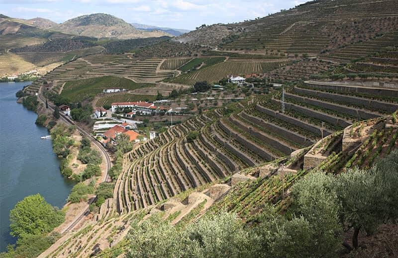 Until the mid-19th century, the treacherous journey to Quinta de Vargellas in the wild, mountainous eastern reaches of the Douro Valley was made by only a brave few. And not all of them lived to tell the tale.