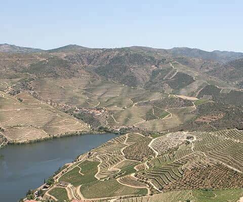 The Douro Valley, the river and the port wine vineyards