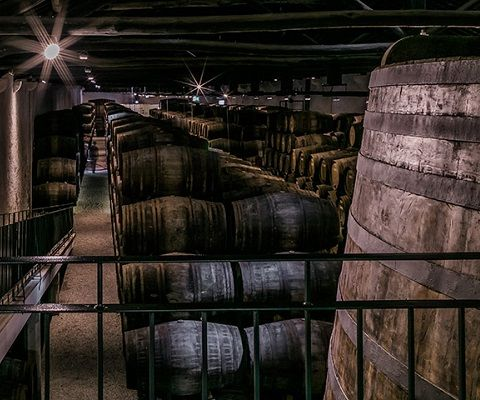 Port wine ageing in wood casks